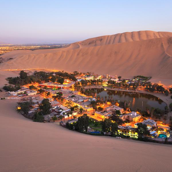Das Bild zeigt eine Oase in der Wüste.