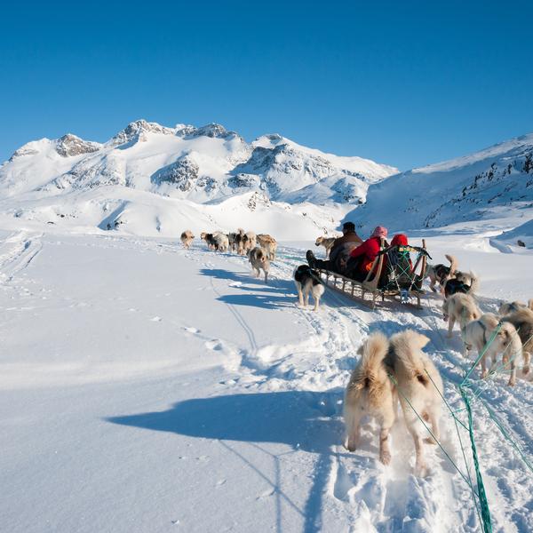 Dog-sledding in Greenland