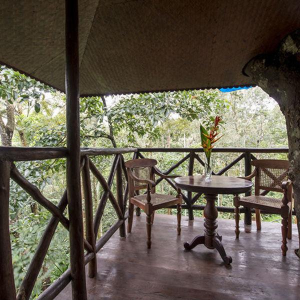 Nuit dans une Treehouse au Kerala