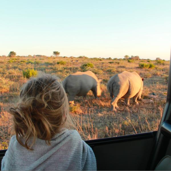 Mit meiner Tochter auf Safari gehen und Nashörner sichten (Sibuya Game Reserve)
