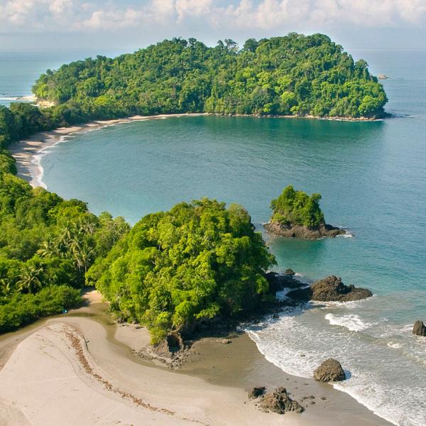 Das Bild zeigt eine grün bewachsene Halbinsel mit Strand.