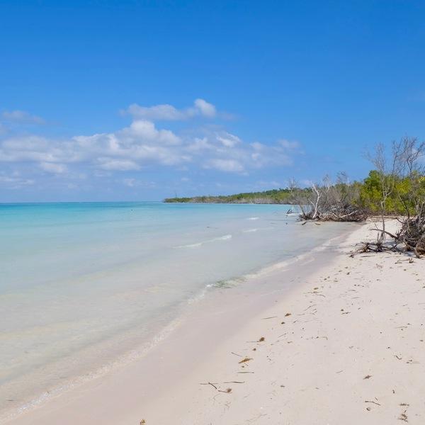 Das Bild zeigt einen Strand in Kuba.
