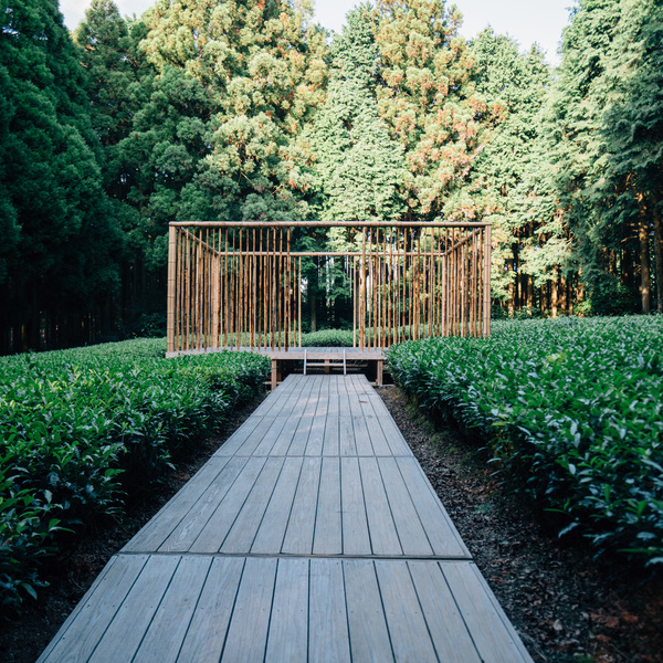 Tea farmers in Kyushu secretly make a beautiful tea house in the forest which is not known to most people!