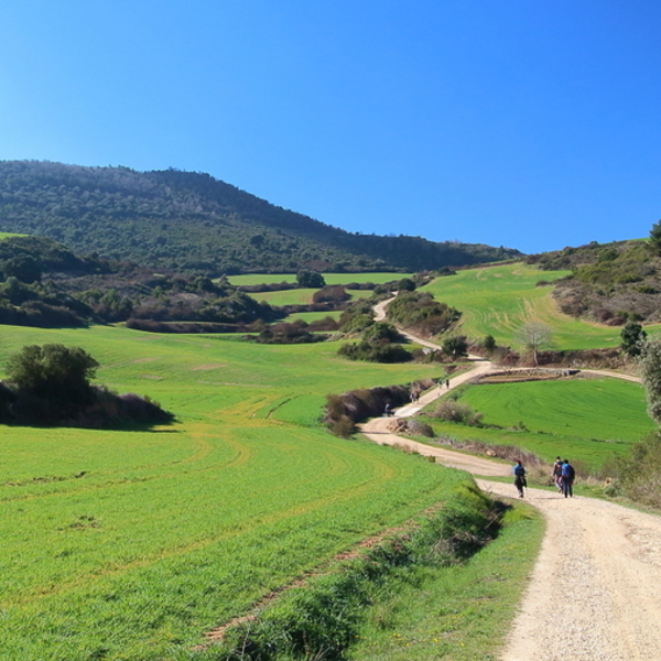 Walkers along the Camino