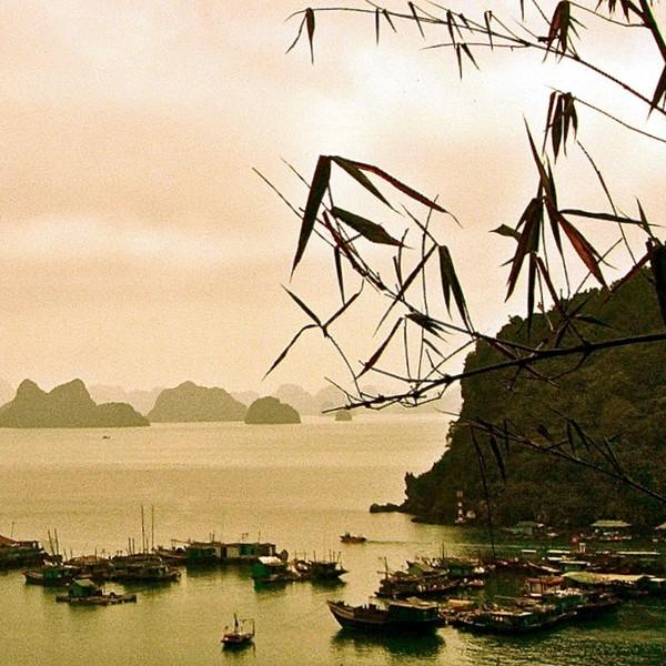 Vue sur un petit port de pêche de la baie d'Halong avec ses formations karstiques au lointain