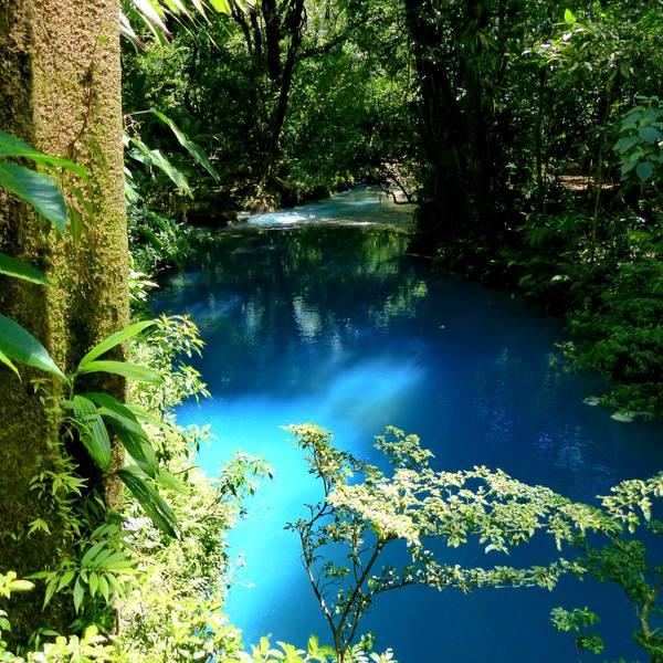 Rayon de soleil sur une eau bleu vif au milieu de la forêt tropicale