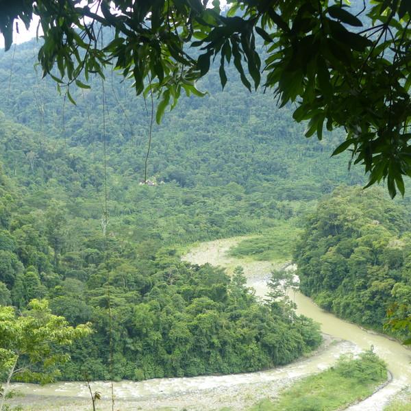 Les méandres du rio Savegre au milieu de la forêt tropicale