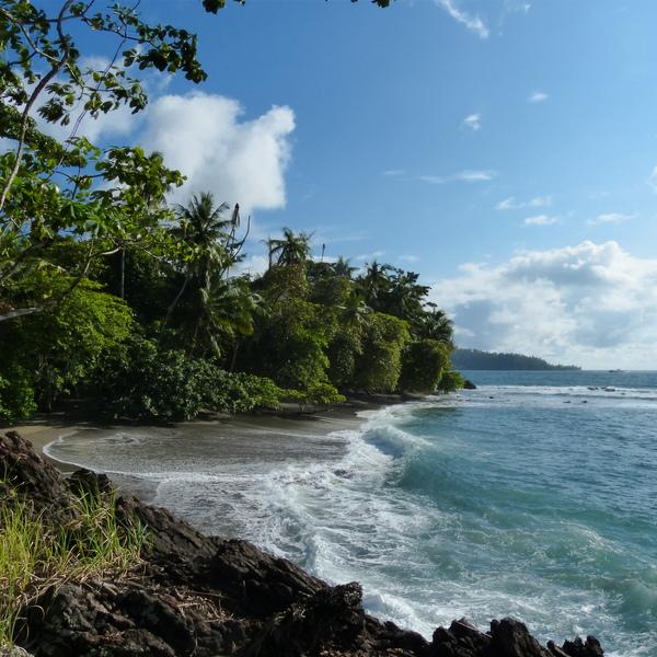 Crique nichée sur une côte rocheuse cernée de forêt tropicale