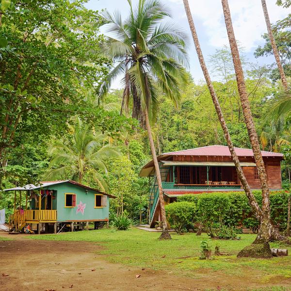 Une maison caribéenne entourée de végétation tropicale